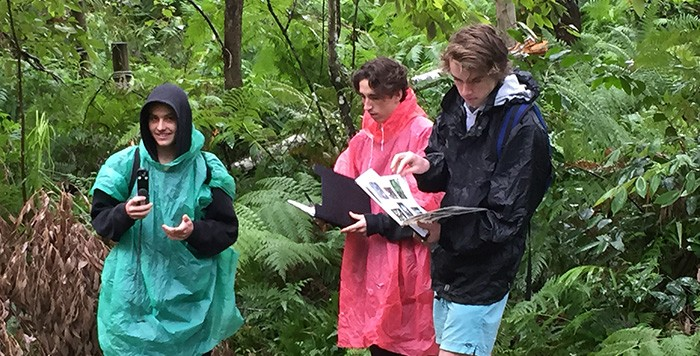 Students doing an area study in a forest